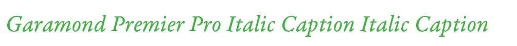 Garamond Premier Pro Italic Caption