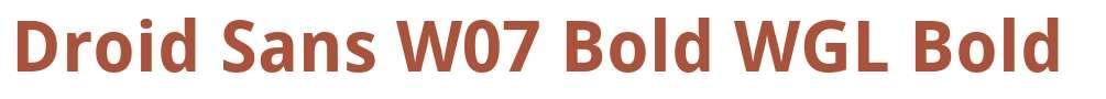 Droid Sans W07 Bold