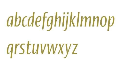 Ergo LT W04 Compressed Italic
