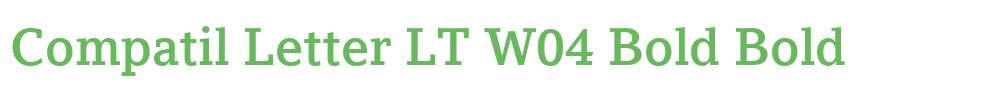 Compatil Letter LT W04 Bold
