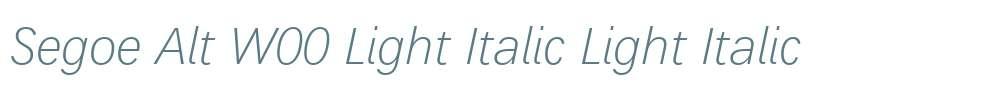Segoe Alt W00 Light Italic