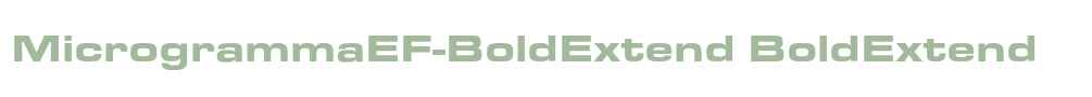 MicrogrammaEF-BoldExtend