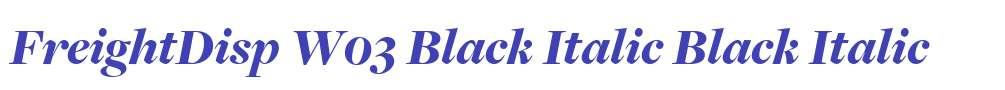 FreightDisp W03 Black Italic