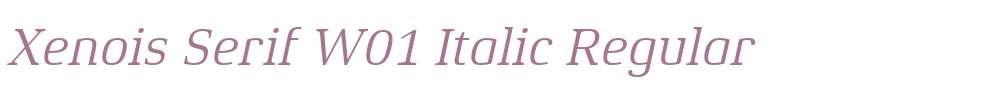 Xenois Serif W01 Italic