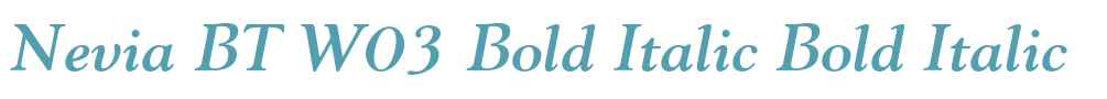 Nevia BT W03 Bold Italic