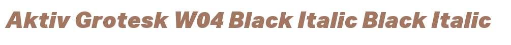 Aktiv Grotesk W04 Black Italic