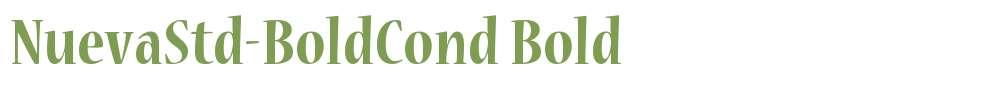 NuevaStd-BoldCond