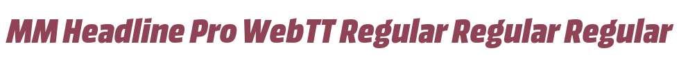 MM Headline Pro WebTT Regular Regular