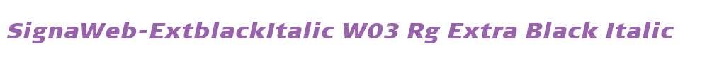 SignaWeb-ExtblackItalic W03 Rg