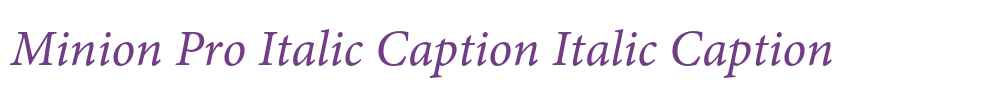 Minion Pro Italic Caption