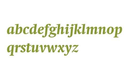 Swift Neue LT W04 Bold Italic