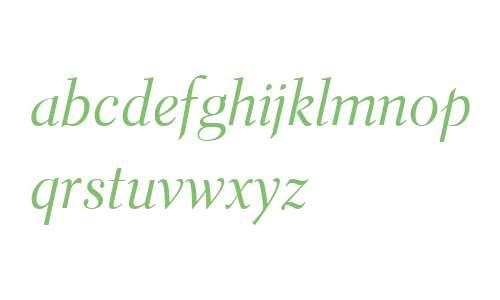 Parkinson Electra W04 Italic
