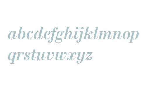 NewStandard W08 Bold Italic