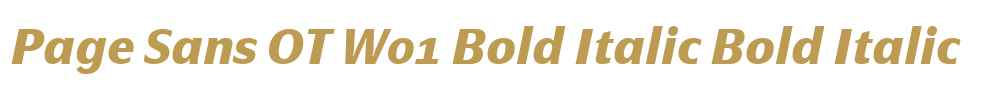 Page Sans OT W01 Bold Italic