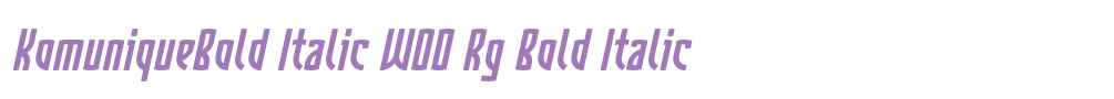 KomuniqueBold Italic W00 Rg