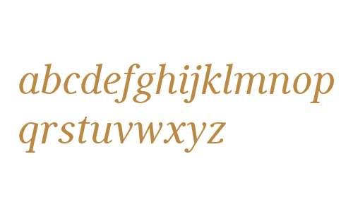 Generis Serif W04 Medium Italic