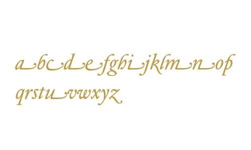 DTLElzevirTBookSwash-Italic