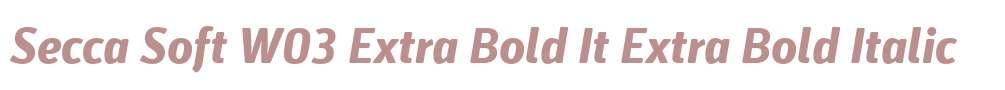 Secca Soft W03 Extra Bold It