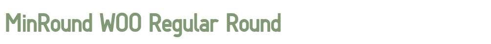 MinRound W00 Regular