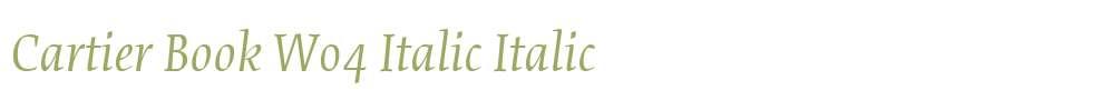 Cartier Book W04 Italic