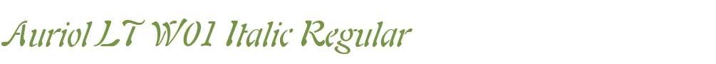 Auriol LT W01 Italic