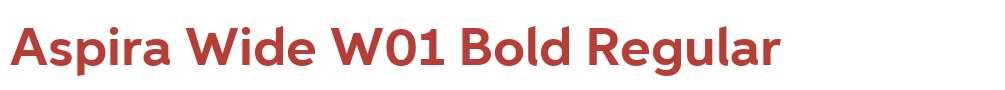 Aspira Wide W01 Bold