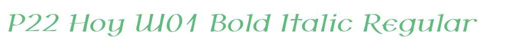 P22 Hoy W01 Bold Italic