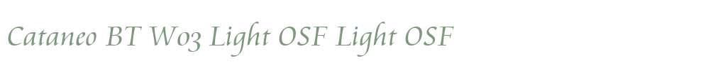 Cataneo BT W03 Light OSF