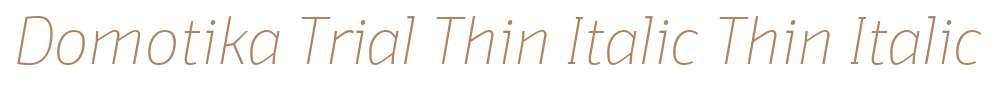 Domotika Trial Thin Italic