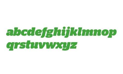 Stag Web Black Italic