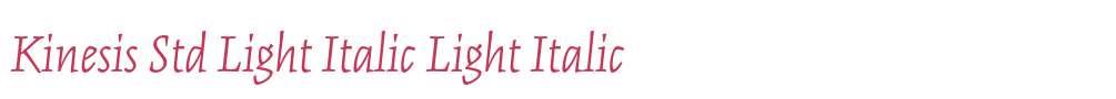 Kinesis Std Light Italic