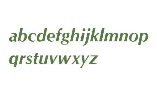 Optane Bold Italic V2