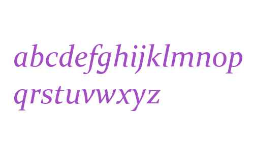 Constantia W01 Italic