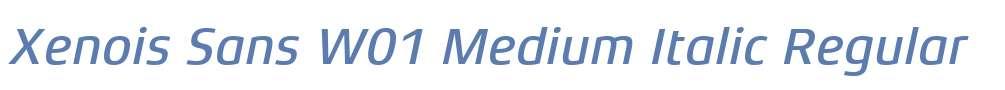 Xenois Sans W01 Medium Italic