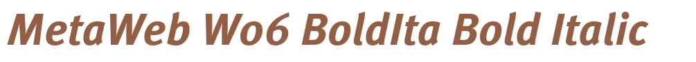 MetaWeb W06 BoldIta