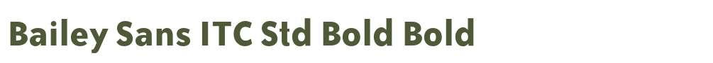 Bailey Sans ITC Std Bold