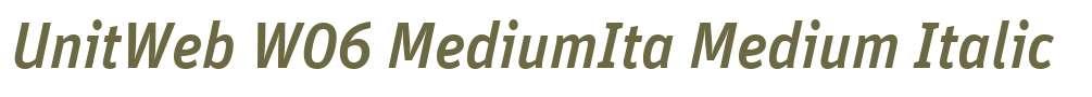 UnitWeb W06 MediumIta