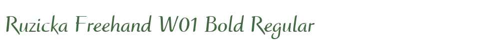 Ruzicka Freehand W01 Bold