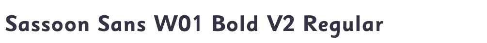 Sassoon Sans W01 Bold V2