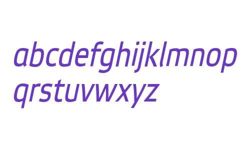 EtelkaNarrowTextPro-Italic