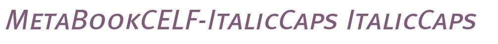 MetaBookCELF-ItalicCaps
