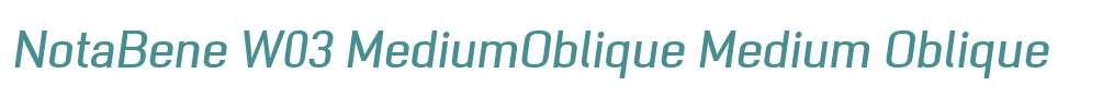 NotaBene W03 MediumOblique