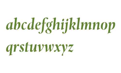 Levato W04 Bold Italic
