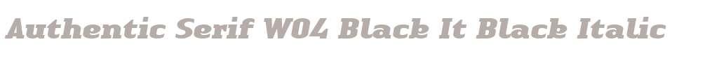 Authentic Serif W04 Black It