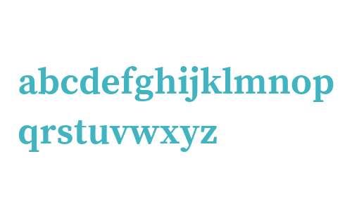 Source Serif Pro Bold V2