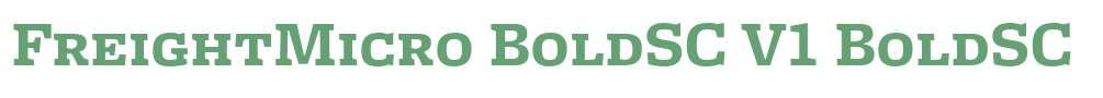 FreightMicro BoldSC V1