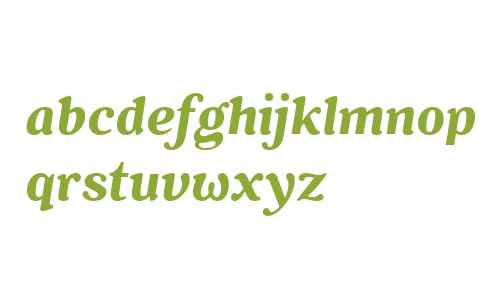Battlefin W00 Bold Italic