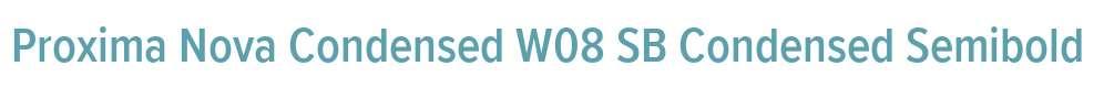 Proxima Nova Condensed W08 SB