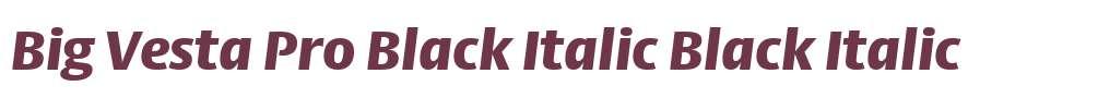 Big Vesta Pro Black Italic