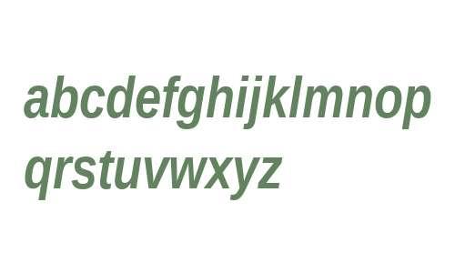 Liberation Sans Narrow Bold Italic